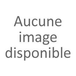 Oreocereus celsianus diam 8.5 cm
